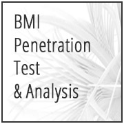 BMI Penetration Test & Analysis