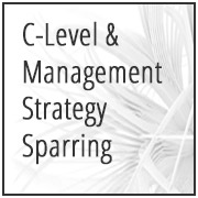 C-Level & Management Strategy Sparring
